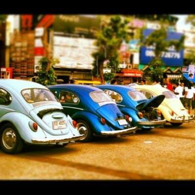 CM___beetles__mob.jpg