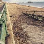 Mob_Brighton21